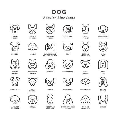 Dog - Regular Line Icons