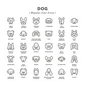 Dog - Regular Line Icons - Vector EPS 10 File, Pixel Perfect 30 Icons.