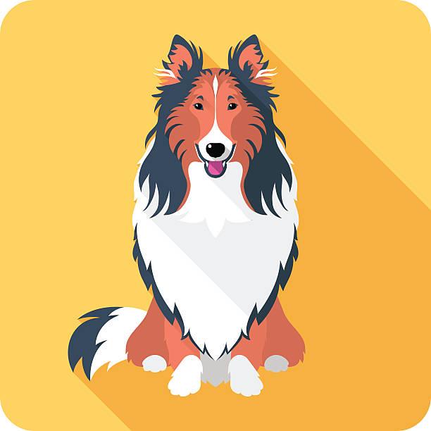 langhaar-collie hund symbol flachen design - collie stock-grafiken, -clipart, -cartoons und -symbole