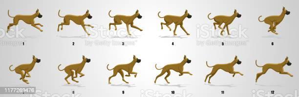 Dog run cycle animation sequence vector id1177269476?b=1&k=6&m=1177269476&s=612x612&h=vyxqmnyvtp84e klimeiumz5qbguqaz q5ozwlmgi2e=
