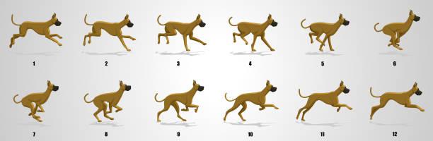 dog run cycle animation sequence - sekwencja obrazu stock illustrations