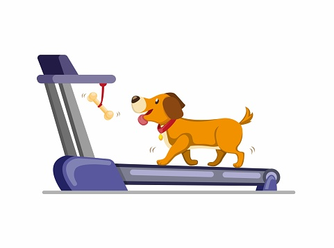 Dog Running In Treadmill To Get Bone Training Dog To Run Or Walk In Home Cartoon Flat Illustration Vector Isolated In White Background Stock Illustration Download Image Now Istock