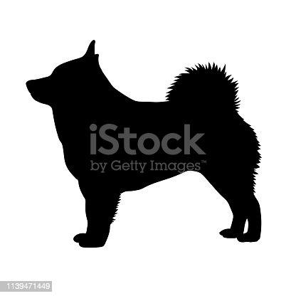 Dog Schipperke breed on a white background. Silhouette. Vector illustration