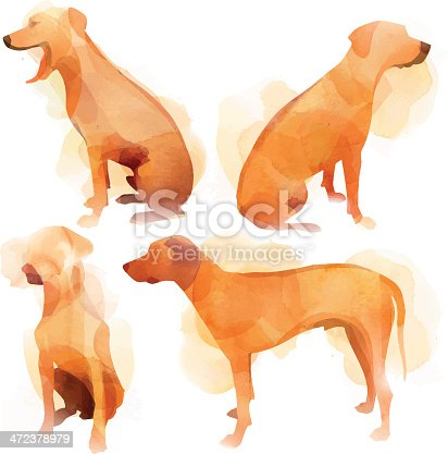 Image shows a group of rhodesian ridgeback, without opening shapes and gradients; big jpeg (350DPI); digital drawing with free wild style; fantasy painting; better for white backgrounds