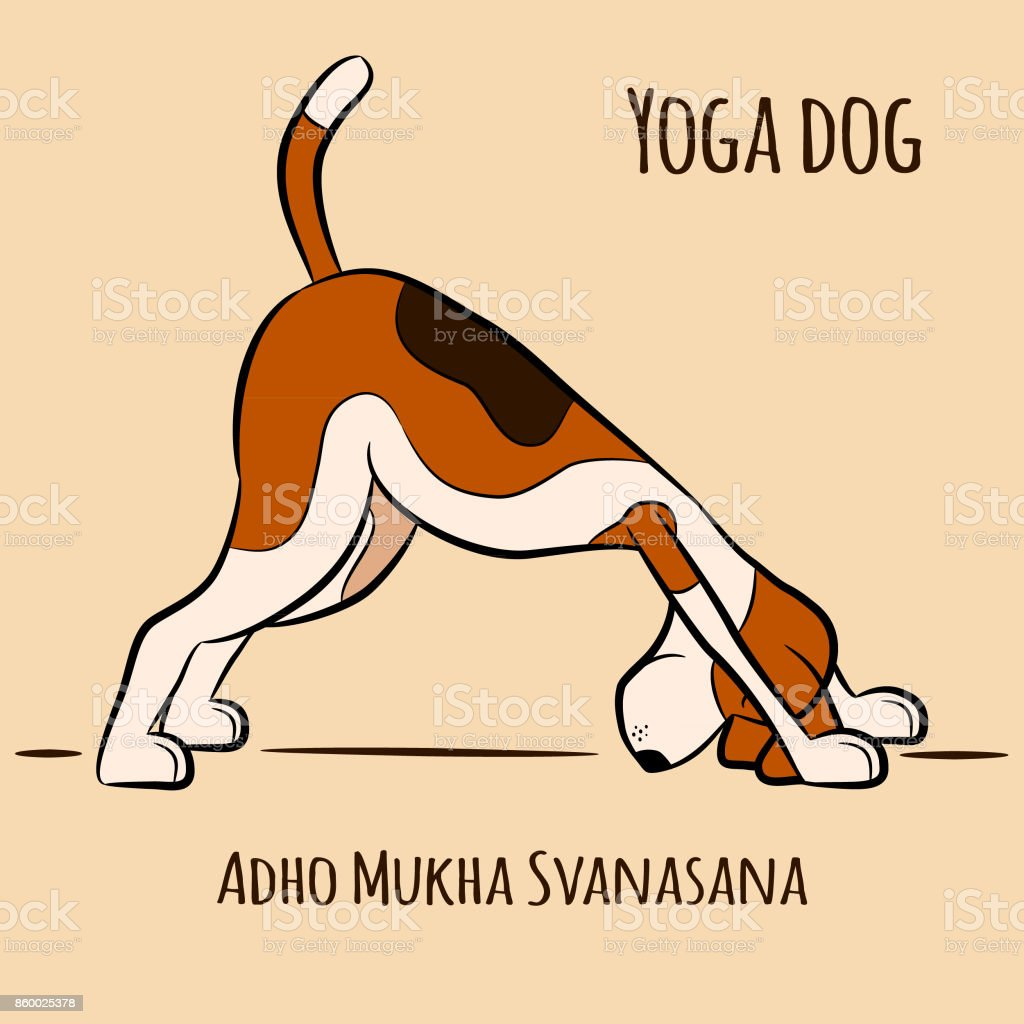 dog shows yoga pose Adho Mukha Svanasana vector art illustration