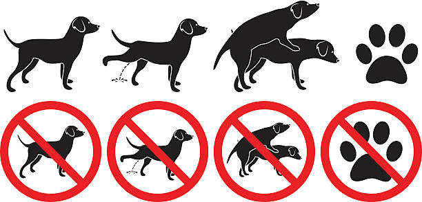 Dog sign vector illustration peeing grooming making love and pawprint - Illustration vectorielle