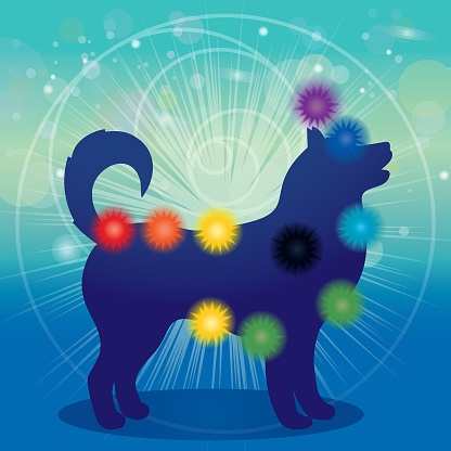 Dog Silhouette And Chakras