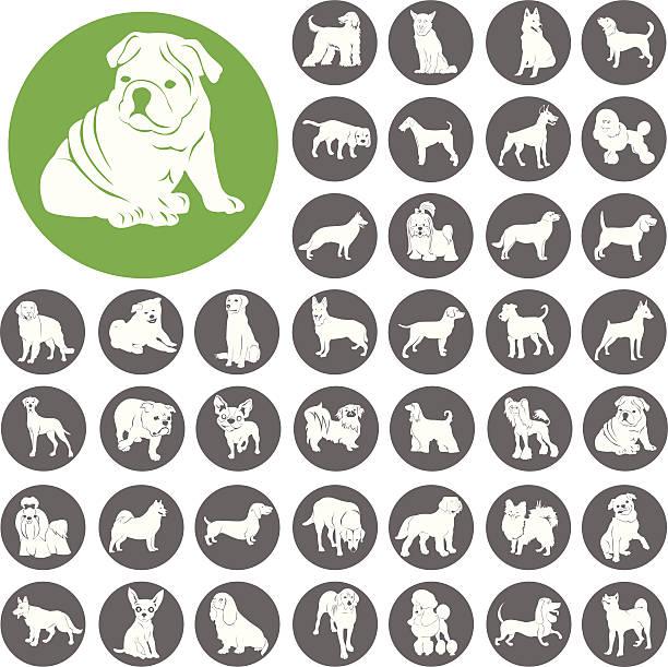 Hund Silhouette-Symbol-Symbol.  Illustration eps10 – Vektorgrafik