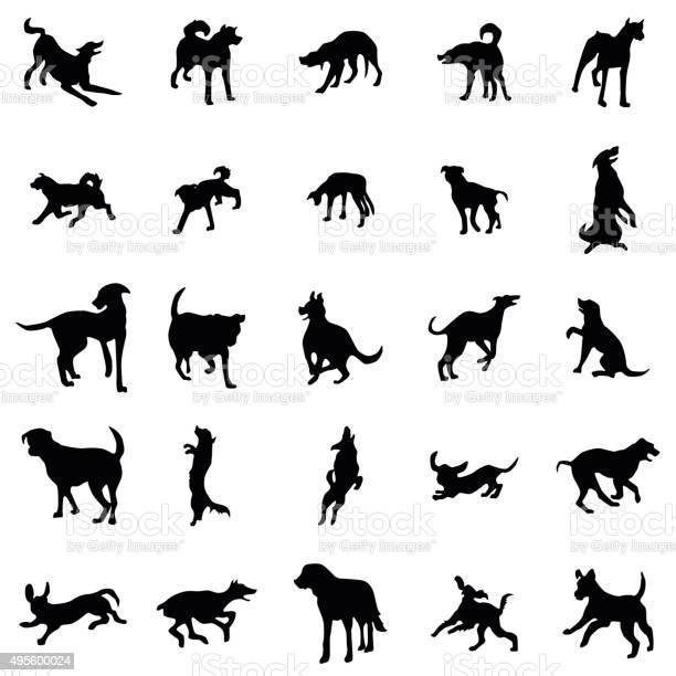 Dog silhouettes set vector id495600024?b=1&k=6&m=495600024&s=612x612&h=325pokjjngm6cfcv9jycagwesvfdv6tbhzmp2cdufbe=