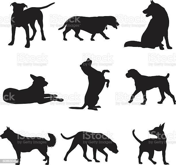 Dog silhouettes set vector id508630494?b=1&k=6&m=508630494&s=612x612&h=3qkgpbf jwwd195qqod lqgbupsg2s5rpfdjyhf2pru=