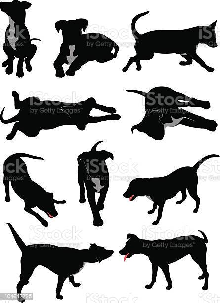 Dog silhouettes vector id104642725?b=1&k=6&m=104642725&s=612x612&h=5edmobbjnz3xvndejuqjgfcvx5xcdinp0qpr8zp9o64=