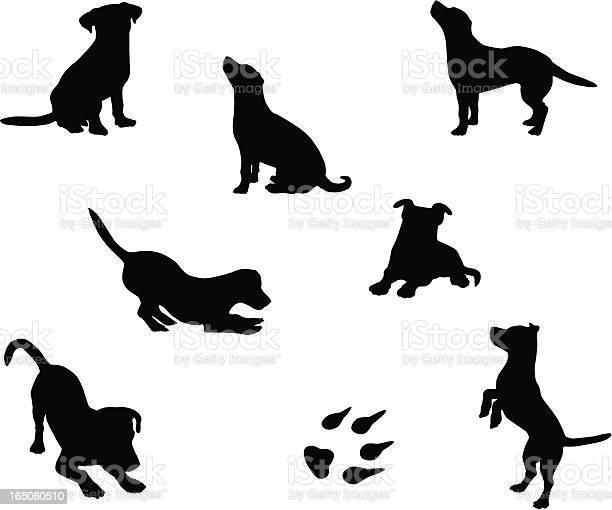 Dog silhouettes vector id165060510?b=1&k=6&m=165060510&s=612x612&h=c5ryifwdamsnlprkto2qkhpo1v2dwressro0  0hmee=