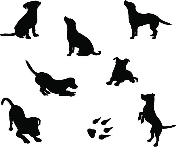 stockillustraties, clipart, cartoons en iconen met dog silhouettes - honden