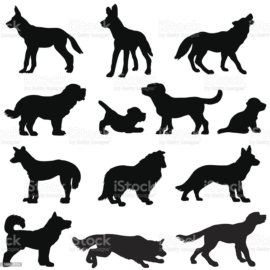 Dog silhouettes, working and wild vector art illustration