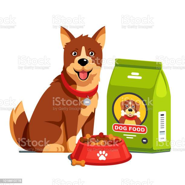 Dog sitting next to full dry food bowl and bag package flat style vector id1018810778?b=1&k=6&m=1018810778&s=612x612&h=1uo739joowylh58 7kwsgoumaxszhnggvovumfid5mw=
