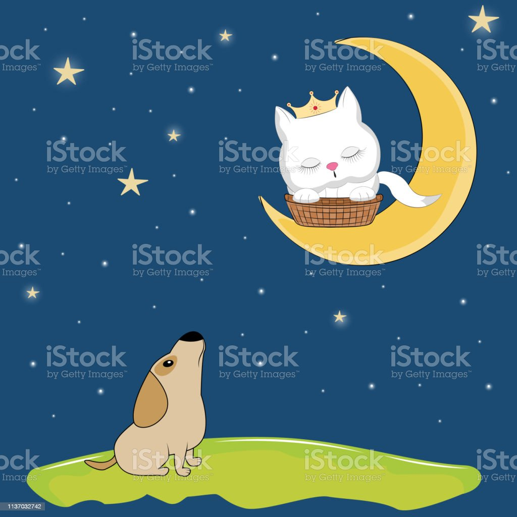 Night landscape where cute dog sitting on the ground and in looks at...