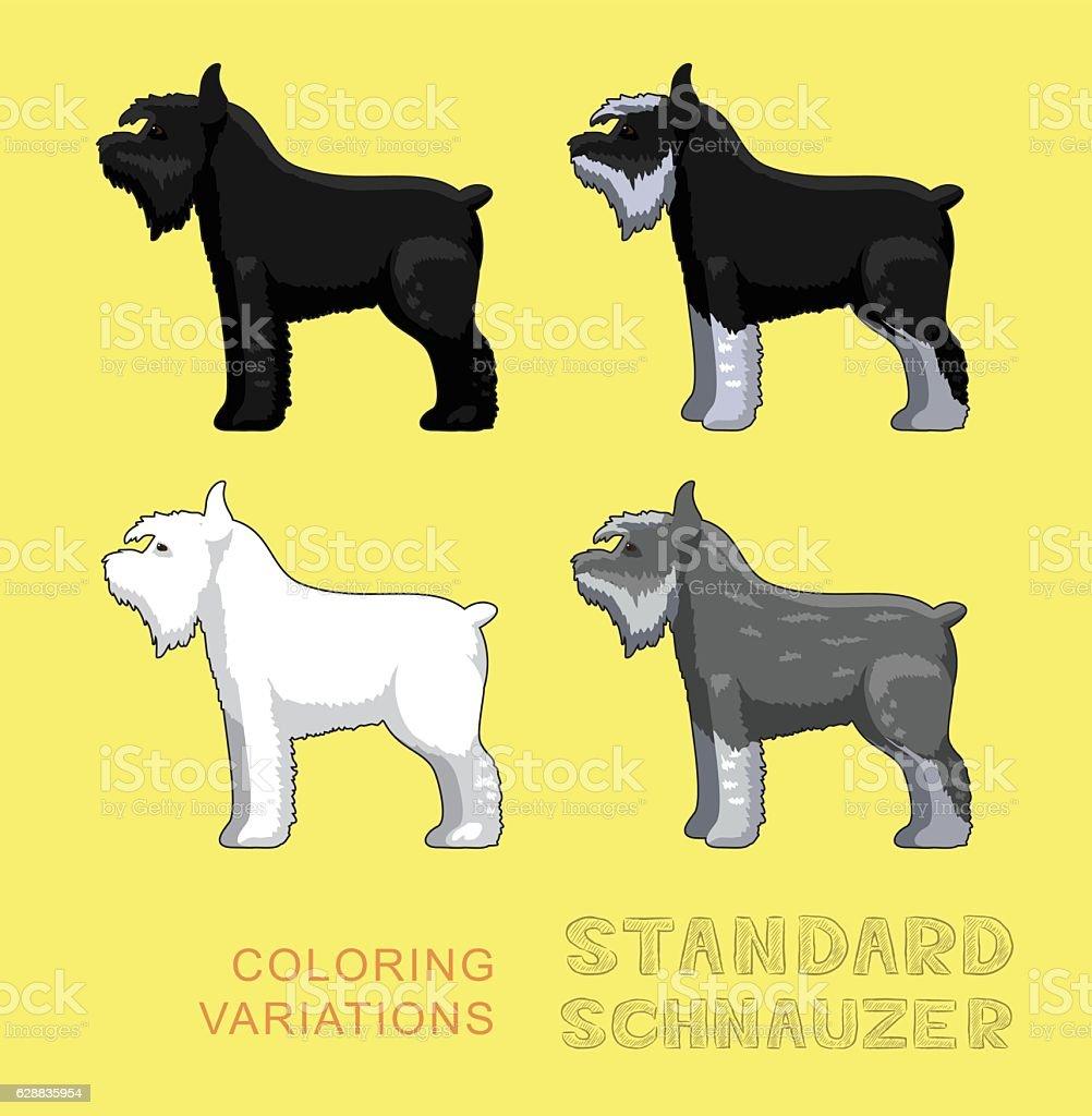 Dog Standard Schnauzer Coloring Variations Vector Illustration Stock