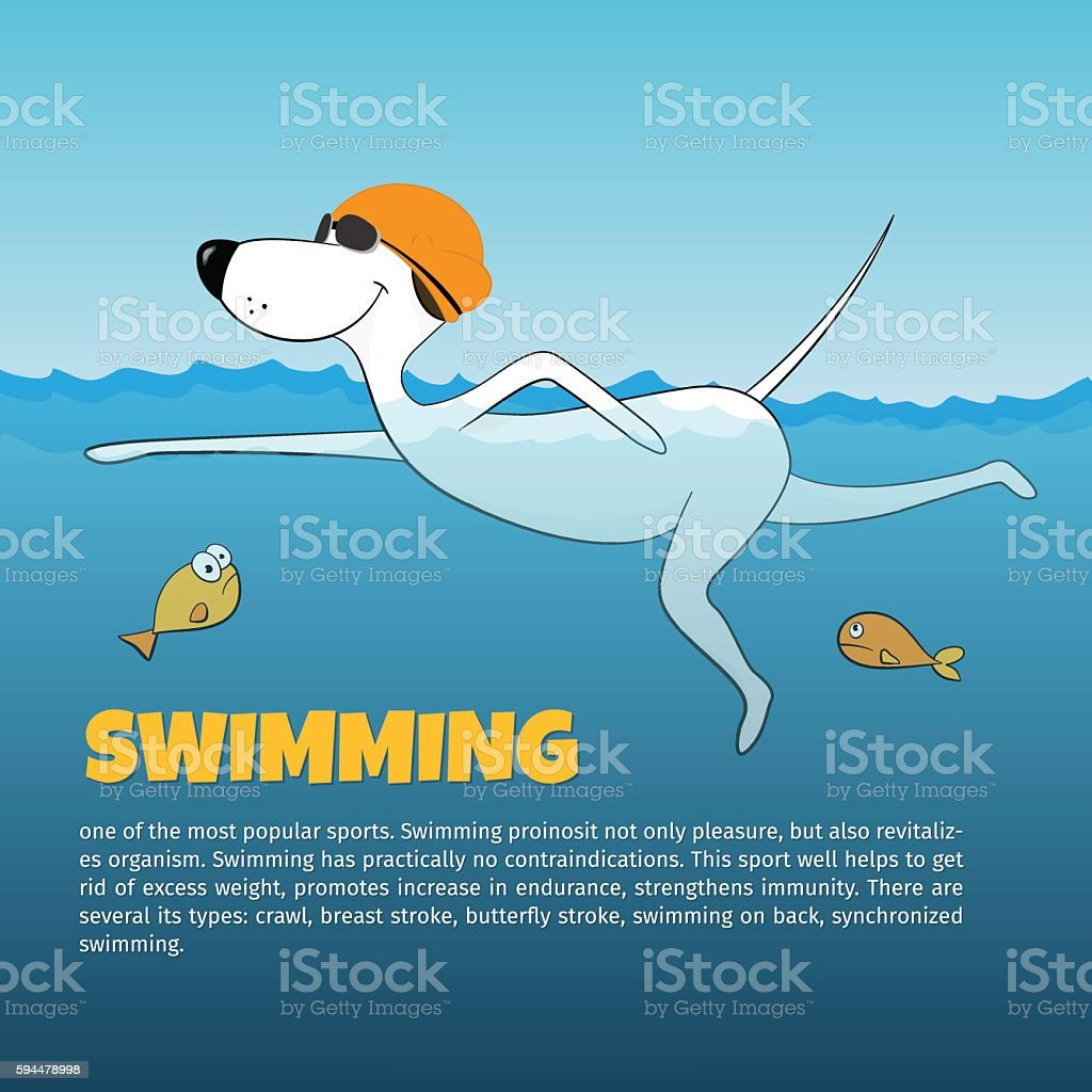 Dog swimming in the water. vector illustration vector art illustration