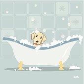 Dog taking Bubble Bath