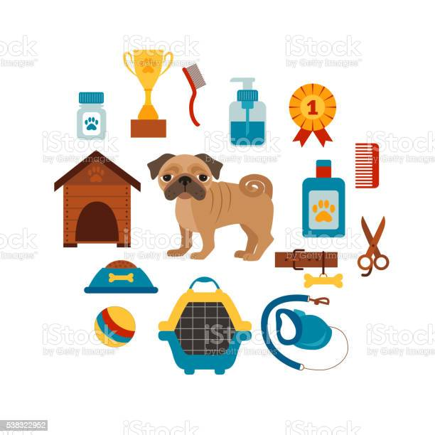 Dog training concept with pet care elements vector id538322952?b=1&k=6&m=538322952&s=612x612&h=9aggt25bq5ypry367psshyajkfyrx9s97fgci2rnlgq=