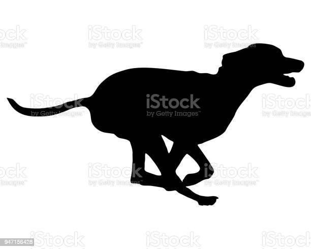 Dog training vector id947156428?b=1&k=6&m=947156428&s=612x612&h=gdmd2md isf1ub 9gycjo9ltg6nekmznp js5tfnar8=