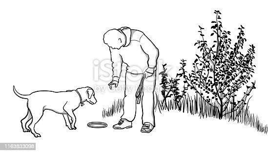 istock Dog Training With Frisbee 1163833098