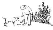 Dog Training With Frisbee