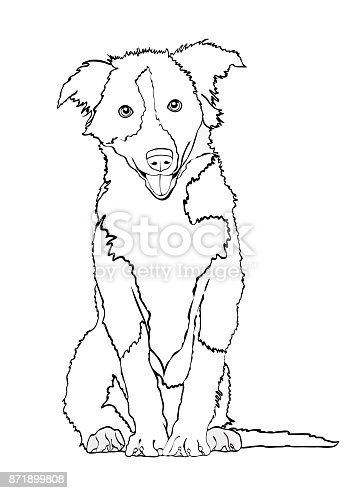 Black and white dog drawing - photo#49