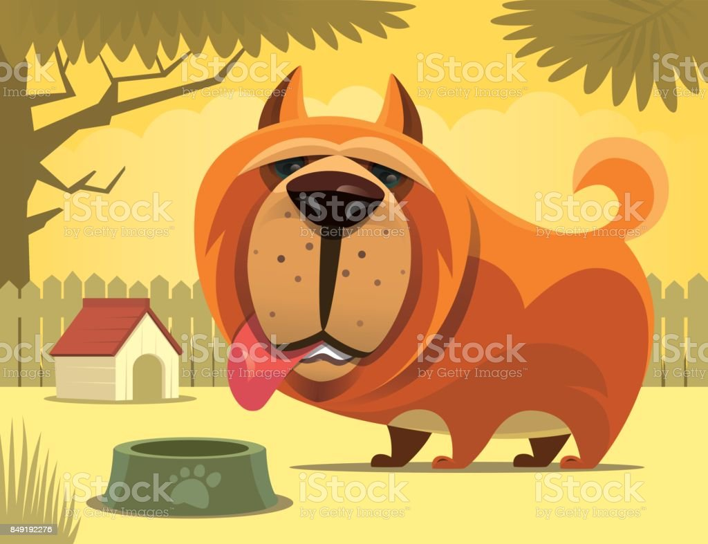dog waiting for food vector art illustration