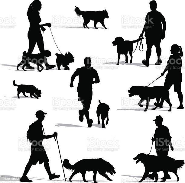 Dog walkers vector id165819863?b=1&k=6&m=165819863&s=612x612&h=7jsgwf1k86iyvqnttsw4cpm g94ojch30j9fb0vybmm=