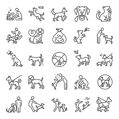 Dog walking, icon set. Dog on a leash with the owner, linear icons. Clean up after your dog. Playing with a pet. Editable stroke