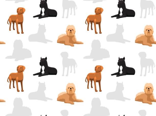 hund-wallpaper 38 - vizsla stock-grafiken, -clipart, -cartoons und -symbole