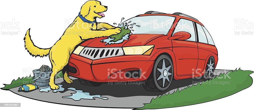 Dog Washing A Car royalty-free stock vector art