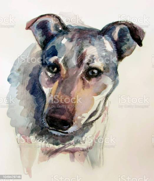 Dog watercolor realistic painting vector id1049429746?b=1&k=6&m=1049429746&s=612x612&h=2s9qwooasd0zayenkgbx23vvko6gjxtvbcrqwmlu 5w=