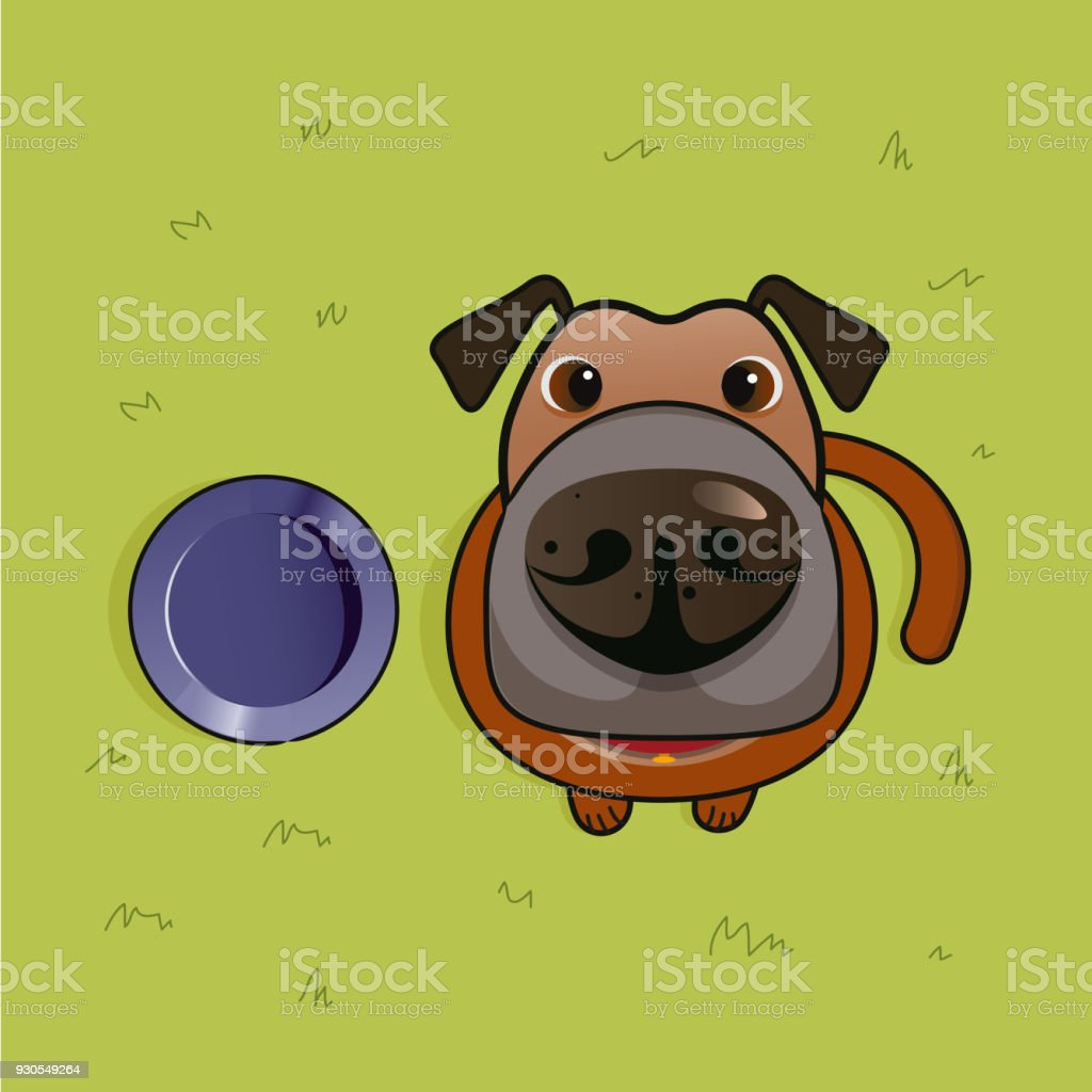 Dog with his Dog Bowl vector art illustration