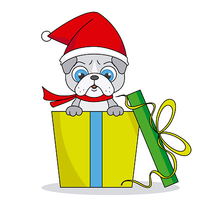 Dog with santa hat inside a gift package