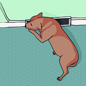 istock Doggy sleeping by air vent - Puppy enjoying at home 1329390879