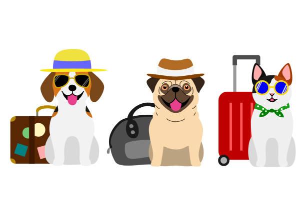 旅行に行く犬と猫 ベクターアートイラスト