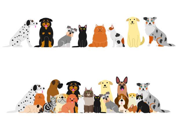 犬と猫のボーダー セット ベクターアートイラスト