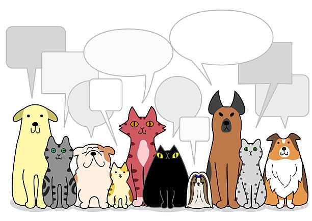 hunde und katzen mit sprechblasen gruppe - collie stock-grafiken, -clipart, -cartoons und -symbole