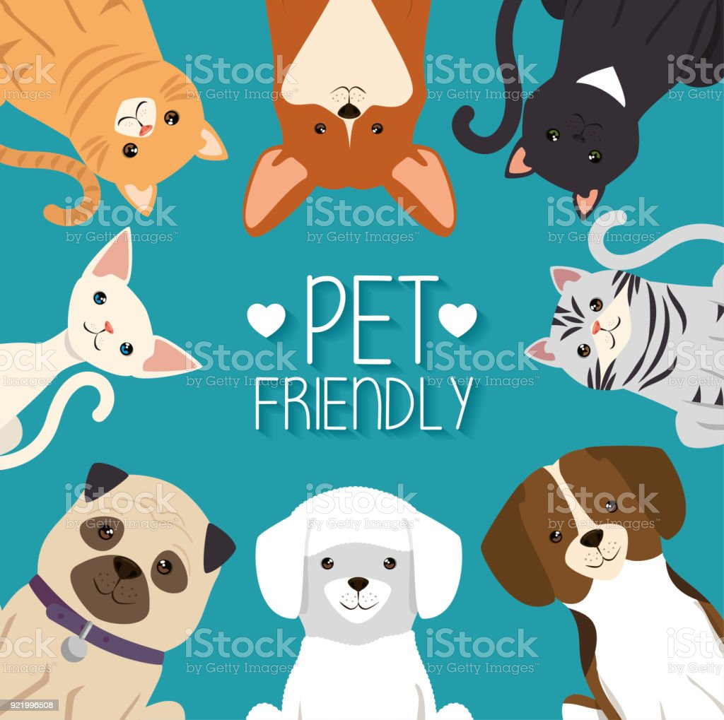 dogs and cats pets friendly vector art illustration