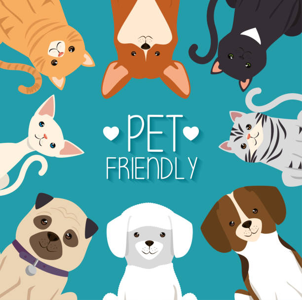 dogs and cats pets friendly - pets stock illustrations, clip art, cartoons, & icons