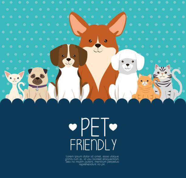 ilustraciones, imágenes clip art, dibujos animados e iconos de stock de mascotas perros y gatos amistosas - mascota