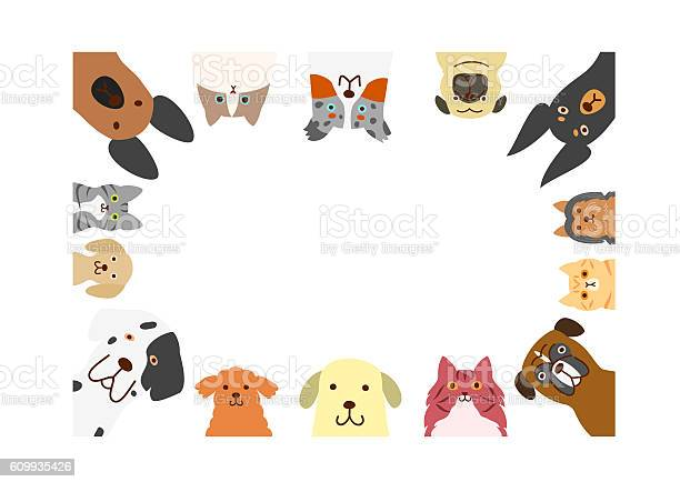 Dogs and cats rectangle frame vector id609935426?b=1&k=6&m=609935426&s=612x612&h=cubunowakyjddq6pciylzrequfvbftp3g95bwdo1le0=