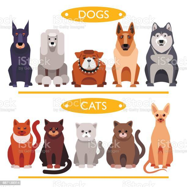 Dogs and cats vector id687139314?b=1&k=6&m=687139314&s=612x612&h=hptv w8axxwdonz6axx s57ebxtzcvgdbb2yup7yevk=