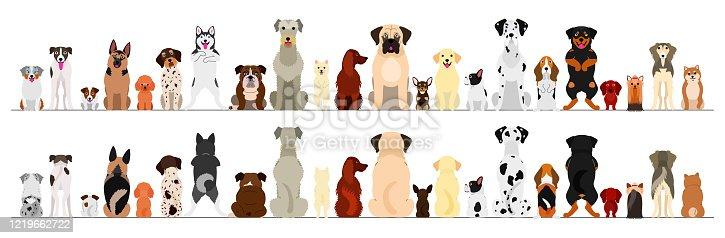 dogs big border set