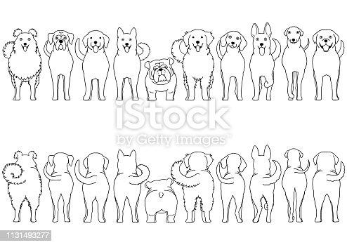 dogs breed border set line art