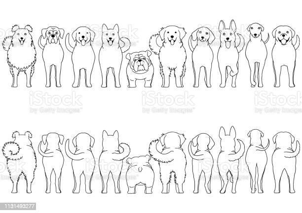 Dogs breed border set line art vector id1131493277?b=1&k=6&m=1131493277&s=612x612&h= nq67 tmml3o fcah7 tx2iopqn icfac5njds7i4f8=