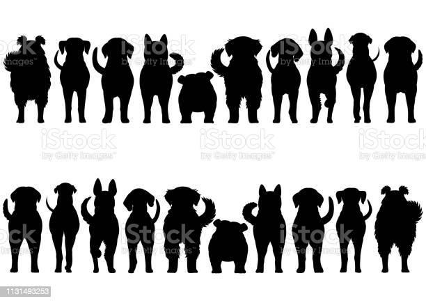 Dogs breed border set vector id1131493253?b=1&k=6&m=1131493253&s=612x612&h=gqdgagzrzasfeshw6ox0ti0eljsrrwnri23xpgewfwy=