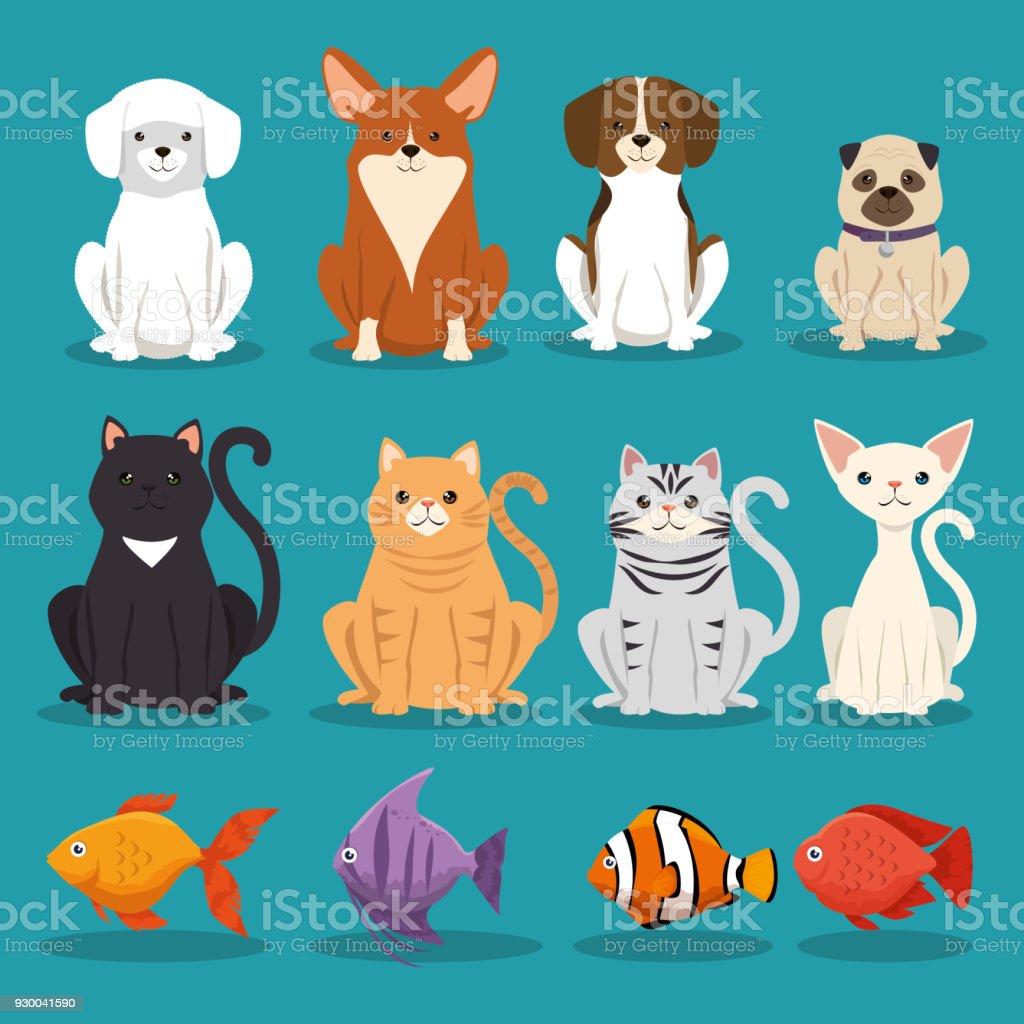 perros gatos y peces personajes animales - ilustración de arte vectorial